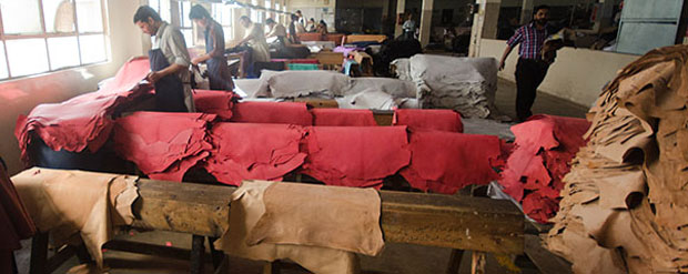 leather-processing